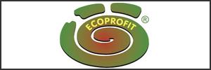 ECOPROFIT®: Secuencia del Proyecto